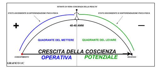 grafico1c
